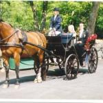 Bild: Maria Nömell och Joakim Nömell , häst och vagn